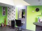 Vega Salon salón